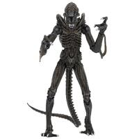 Aliens Ultimate Aliens Warrior 1986 7-Inch Figure - Brown