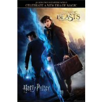 Wizarding World Poster - Harry Potter & Fantastic Beasts