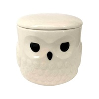 Harry Potter - Hedwig Mug with Lid - By Our Name is Mud