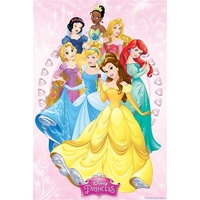 Disney Princess Group Poster #8