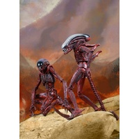 "Neca - Aliens - Genocide Big Chap & Dog Alien 7"" Action Figure 2 Pack"