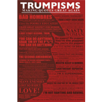 Trumpisms Poster - Quotes #3