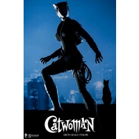"Batman - Catwoman 12"" 1:6 Scale Action Figure"